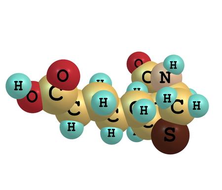 Biotin (B7 or coenzyme R) is a water-soluble B-vitamin. photo