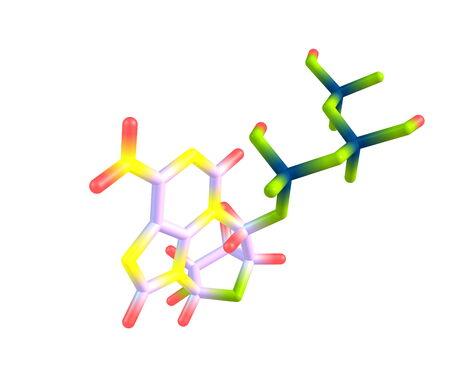 triphosphate: Adenosine triphosphate  ATP  molecule isolated on white