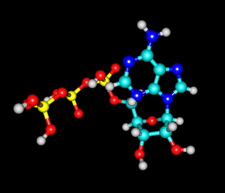 triphosphate: Adenosine triphosphate  ATP  molecule isolated on black Stock Photo