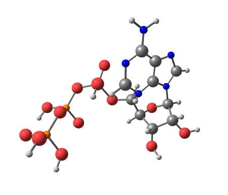 Adenosine triphosphate  ATP  molecule isolated on white