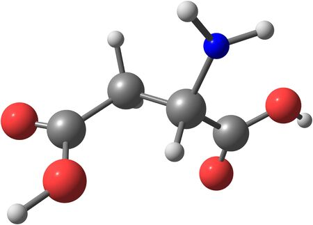 Aspartic acid (Asp) is an amino acid, isolated on white photo
