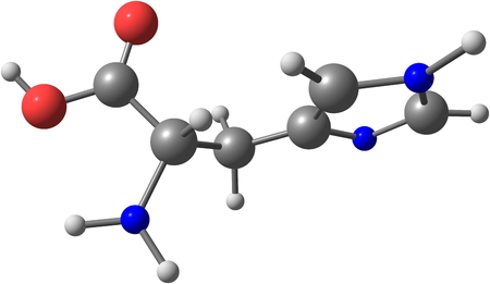 amino: Histidine (His) is an amino acid with an imidazole functional group. It is one of the 23 proteinogenic amino acids
