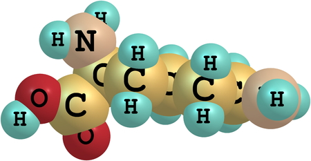 lysine: Lysine (Lys) is an amino acid with the chemical formula HO2CCH(NH2)(CH2)4NH2. It is an essential amino acid for humans