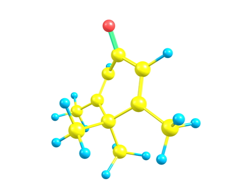 solvent: Penguinone is an organic compound with the molecular formula C10H14O,  Its name comes from the fact that its  molecular structure resembles a penguin