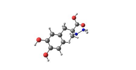 inhibit: Carbidopa is a drug given to people with Parkinsons disease in order to inhibit peripheral metabolism of levodopa