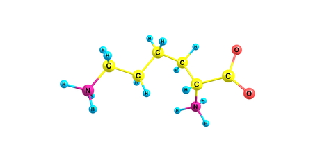 Lysine is an essential amino acid, lysine is a base, as are arginine and histidine.
