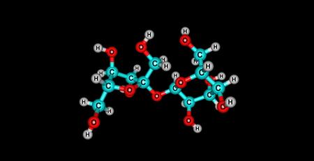 Sucrose ist ein gemeinsames, natürlich vorkommendes Kohlenhydrat in vielen Pflanzen und Pflanzenteile gefunden Standard-Bild - 51057670