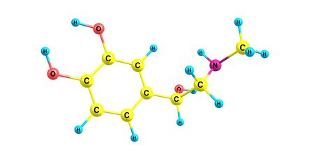 primarily: Adrenaline model molecule is primarily a medication and hormone Stock Photo