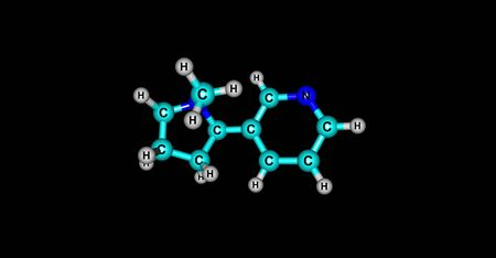 alkaloid: Nicotine is a potent parasympathomimetic alkaloid found in the nightshade family of plants and is a stimulant drug. 3d illustration.