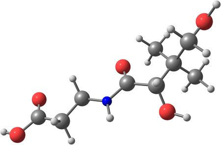 nutrient: Pantothenic acid - vitamni B5 or pantothenate - is a water-soluble vitamin. For many animals, pantothenic acid is an essential nutrient. 3d illustration