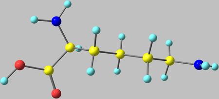 ácido: La lisina - Lys - es un aminoácido. Es un aminoácido esencial para los seres humanos. 3d ilustración