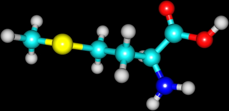 proteins: A model of a molecule of methionine, an essential amino acid. Amino acids are the building blocks of proteins and have many functions in metabolism. 3d illustration Stock Photo