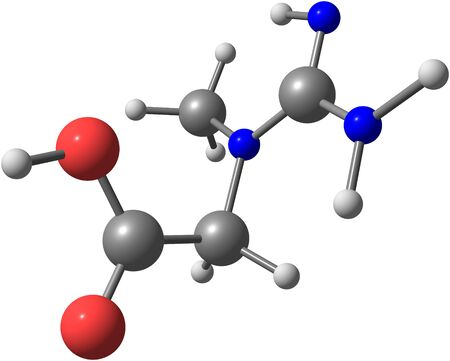vertebrates: Creatine is a nitrogenous organic acid that occurs naturally in vertebrates and helps to supply energy to all cells in the body, primarily muscle. 3d illustration