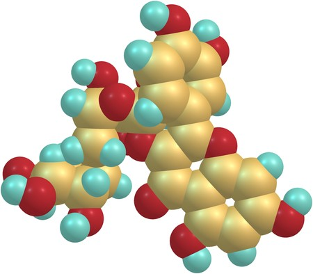 ruta: Rutin - rutoside, sophorin - is the glycoside between the flavonol quercetin and the disaccharide rutinose. 3d illustration