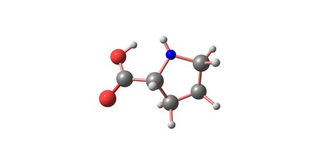 Proline is an alpha-amino acid that is used in the biosynthesis of proteins. 3d illustration