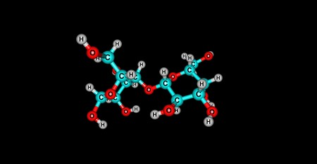 disaccharide: Lactose is a disaccharide sugar composed of galactose and glucose that is found in milk. Lactose makes up around 5 percent of milk. 3d illustration of Lactose