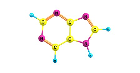 Purine is a heterocyclic aromatic organic compound that consists of a pyrimidine ring fused to an imidazole ring. Purine gives its name to the wider class of molecules, purines. 3d illustration