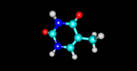 cytosine: Thymine - T, Thy - is one of the four nucleobases in the nucleic acid of DNA. 3d illustration Stock Photo