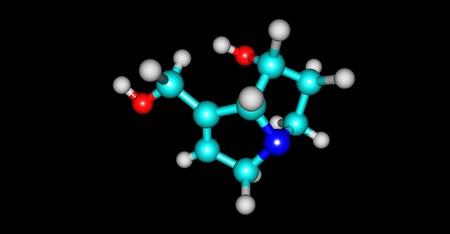alkaloid: Retronecine is a pyrrolizidine alkaloid found in a variety of plants in the genera Senecio. 3d illustration