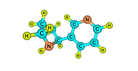 alkaloid: Nornicotine is an alkaloid found in various plants including Nicotiana, the tobacco plant. It is chemically similar to nicotine, but does not contain a methyl group. 3d illustration Stock Photo