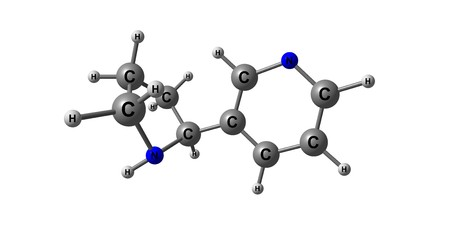Nornicotine is an alkaloid found in various plants including Nicotiana, the tobacco plant. It is chemically similar to nicotine, but does not contain a methyl group. 3d illustration Stock Photo
