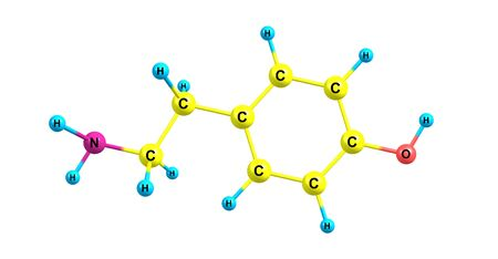Tyramine is a naturally occurring trace amine derived from the amino acid tyrosine. 3d illustration