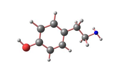Tyramine molecular structure isolated on white