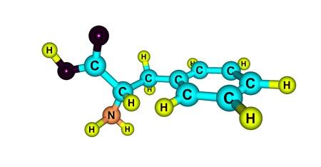 白で隔離フェニルアラニン分子構造