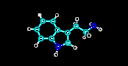 derives: Tryptamine is a monoamine alkaloid. It contains an indole ring structure, and is structurally similar to the amino acid tryptophan, from which the name derives. 3d illustration Stock Photo