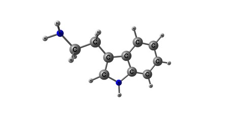 Tryptamine is a monoamine alkaloid. It contains an indole ring structure, and is structurally similar to the amino acid tryptophan, from which the name derives. 3d illustration Stock Photo