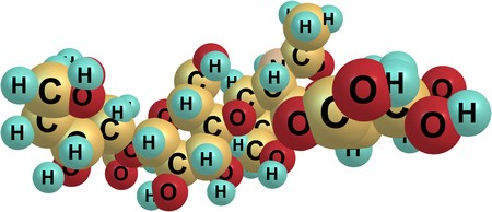 Hyaluronic acid or hyaluronan is an anionic, nonsulfated glycosaminoglycan distributed widely throughout connective, epithelial, and neural tissues. 3d illustration