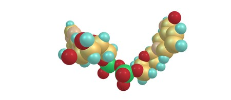 Nicotinamide adenine dinucleotide or NAD is a coenzyme found in all living cells. It is a dinucleotide, because it consists of two nucleotides joined through their phosphate groups. 3d illustration