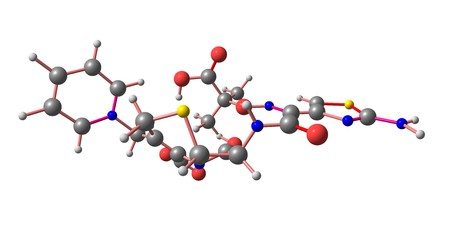 Ceftazidime is an antibiotic useful for the treatment of a number of bacterial infections, meningitis, pneumonia, sepsis, urinary tract infections. 3d illustration