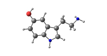 Serotonin or 5-hydroxytryptamine is a monoamine neurotransmitter, and is popularly thought to be a contributor to feelings of well-being and happiness. 3d illustration Stock Photo