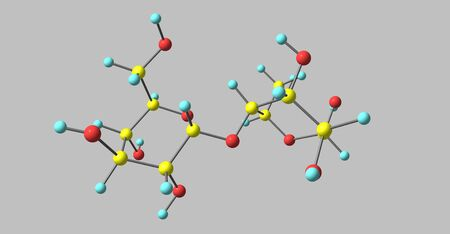 Maltose molecular structure isolated on grey