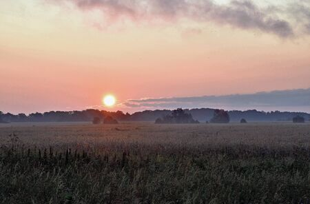Stunning sunrise over a field near the Baltic Sea. Estonia. Zdjęcie Seryjne