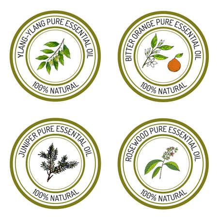 Set von ätherischem Öl-Etiketten: Ylang-Ylang, Wacholder, Bitterorange, Palisander. Vektor-Illustration Standard-Bild - 64081306