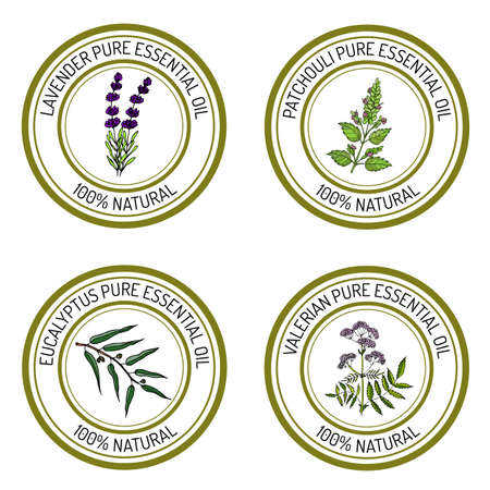 Set of essential oil labels: lavender, patcouli, eucalyptus, valerian. Vector illustration