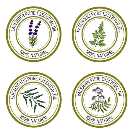 Set of essential oil labels: lavender, patcouli, eucalyptus, valerian. Vector illustration