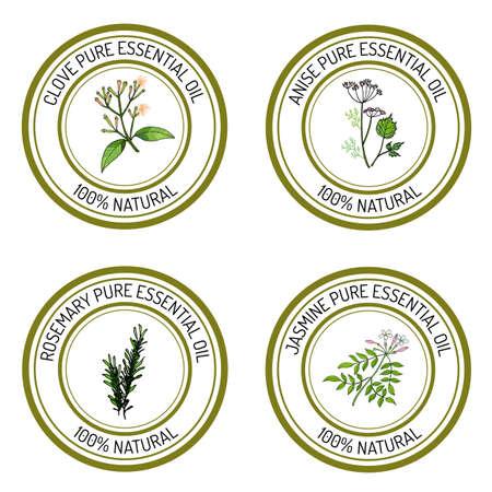 Set of essential oil labels: clove; anise; rosemary; jasmine. Vector illustration