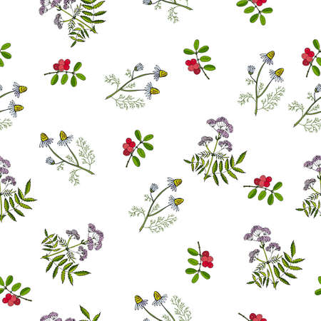 cowberry: Seamless pattern with hand drawn medicinal plants. Vector herbal background.