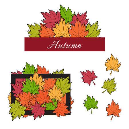 autumn motif: Autumn maple leaves and frames. Vector illustration