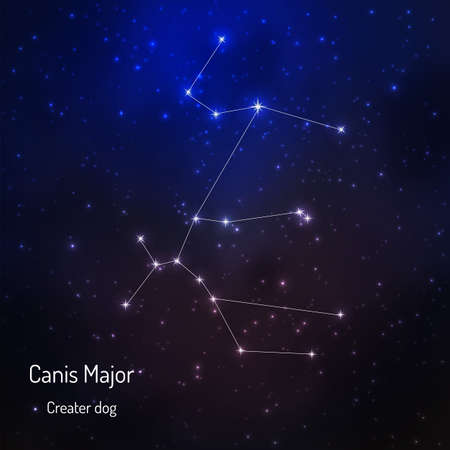Canis magor constellation in the night starry sky. Vector illustration