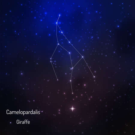 camelopardalis: Camelopardus constellation in the night starry sky. Vector illustration