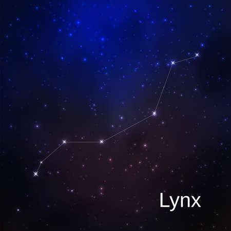 Lynx constellation in the night starry sky. Vector illustration Illustration