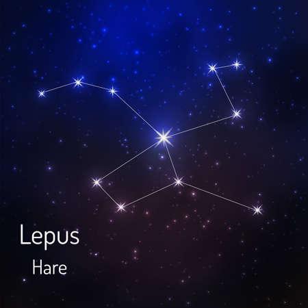 うさぎ座の夜の星空の星座。ベクトル図