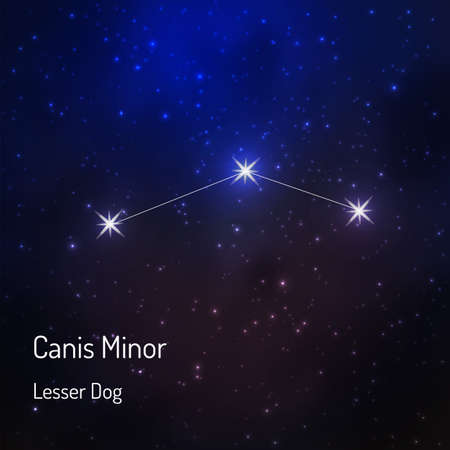 Canis minor (Lesser dog)  constellation in the night starry sky. Vector illustration