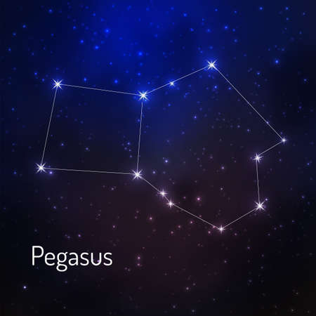 Pegasus constellation in the night starry sky. Vector illustration