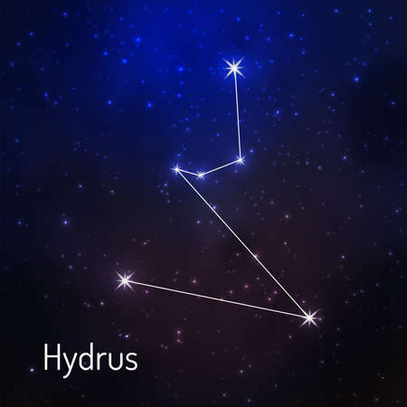 Hydrus constellation in the night starry sky. Vector illustration