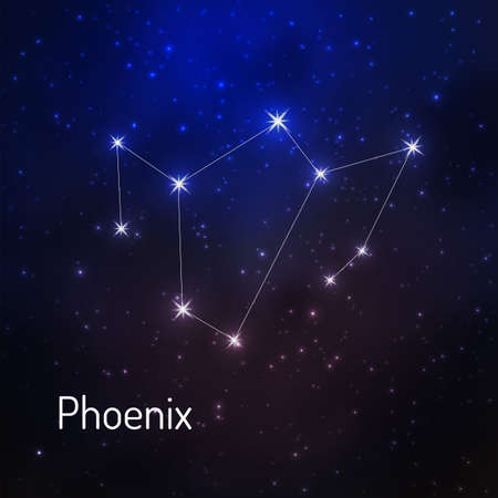 Phoenix constellation in the night starry sky. Vector illustration